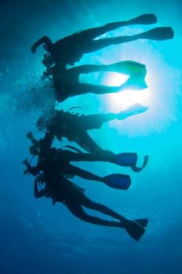 Dykkere set fra under vandet