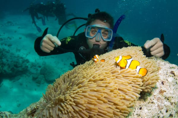 Dykker i koralrevet med klovnefisk