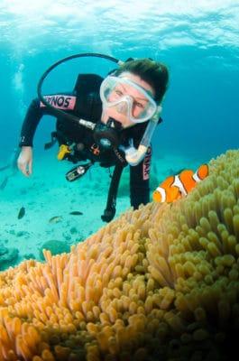 Dykker med klovnefisk i koralrev