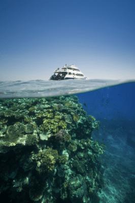Koralrev under havet og skib over havet
