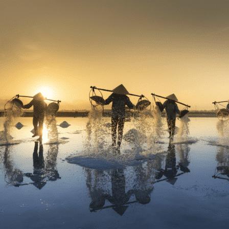 Vietnamesere i vandet med bærerstang i solnedgang