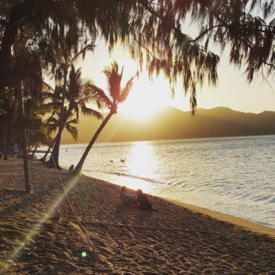 Mennesker sidder på strand med palmer og solnedgang